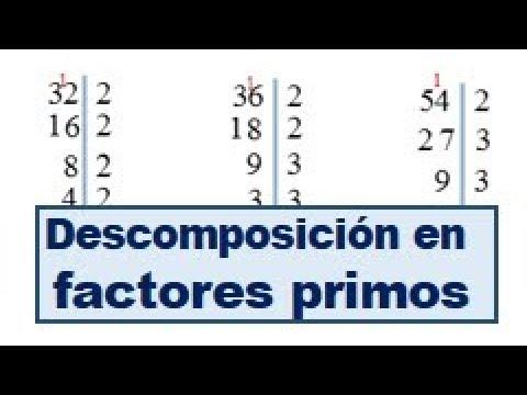 24cf66aa0 Descomposición de factores primos ejercicios resueltos - YouTube