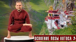 Как достичь? Поза лотоса. Урок 3 динамическое вытяжение (Денис Малинов asanaonline.ru)