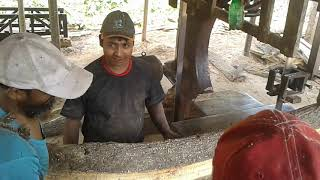 Old, Heavy and Stright Mehogany Tree Cutting at Rural Village Saw Mill of Aisa Bangladesh Saw Blade