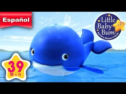 La ballena azul | Y muchas más canciones infantiles | ¡39 minutos de recopilación LittleBabyBum!