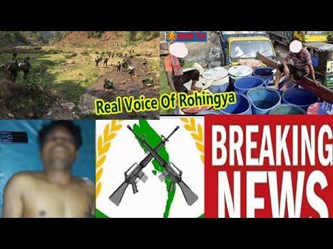 Rohingya Daily News Today 15/January / 2019  (((  صوت الحق  )))  أخبار#أراكان باللغة #الروهنغيا