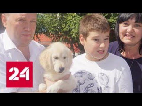 Школьник из Красноярска получил в подарок от Путина щенка - Россия 24