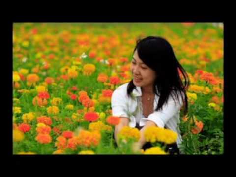 Mùa Xuân trên đỉnh bình yên _Từ Công Phụng