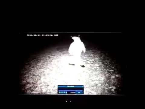 Creepy Clown Caught On Security Camera In Casper Area