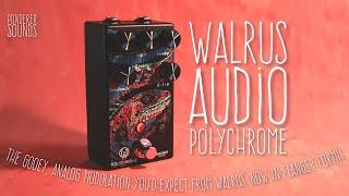 #80 Walrus Audio - Polychrome
