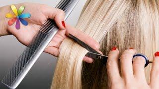 Смотреть видео что первым надо делать стричся или красить волосы