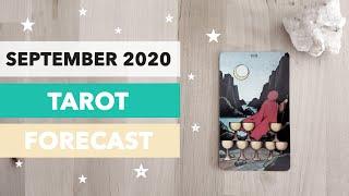 September 2020 Tarot Forecast: A Buddha moment, Higher values & Regeneration ❤️