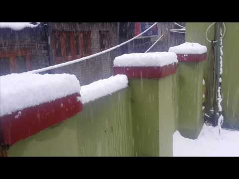 Snowing In Kashmir (Srinagar) 2017 || Kashmir Express - The Travel Company