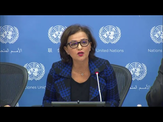 Najat Rochdi (MINUSCA) on Central African Republic - Press Conference (9 November 2017)