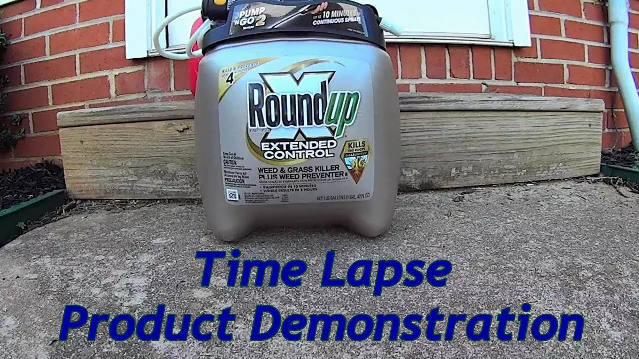 Round Up Extended Control Weed Killer Product Demonstration