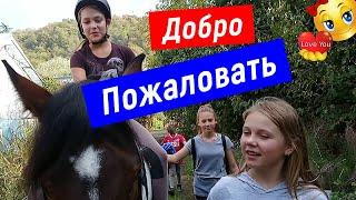 Активный отдых в Сочи, Конные прогулки на лошадях, Верховая езда, Конный спорт, Смайли, Smile, 717