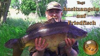 Ansitzangeln auf Friedfisch | Tag 5 | Schleie | Brassen | Karpfen | Spiegelkarpfen 20 Pfünder