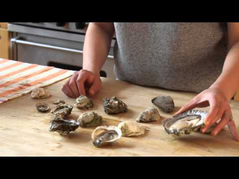 Understanding Types Of Oysters