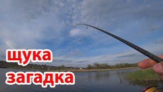 Ох уж эти щучьи загадки рыбалка на реке на спиннинг