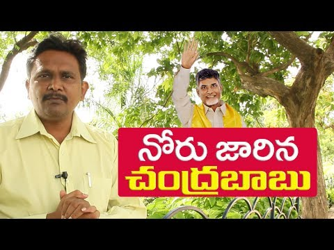 Download Youtube: chandrababu tounge slip | is it fact  | చంద్రబాబు నిజంగా నోరు జారారా?