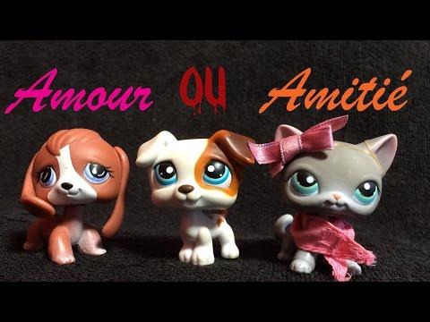 AMOUR OU AMITIE Petshop #1