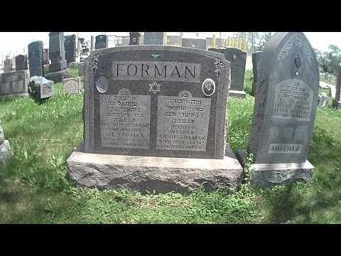 Waldheim Jewish Cemetery - Forman Family
