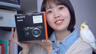 나의 새로운 카메라 소니a6400 솔직리뷰/sel35f…