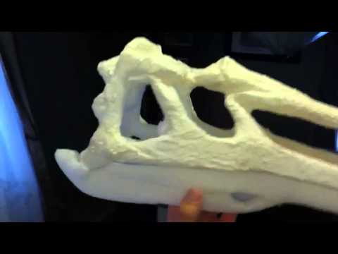 Suchomimus skull in foam and paper mâché part 2