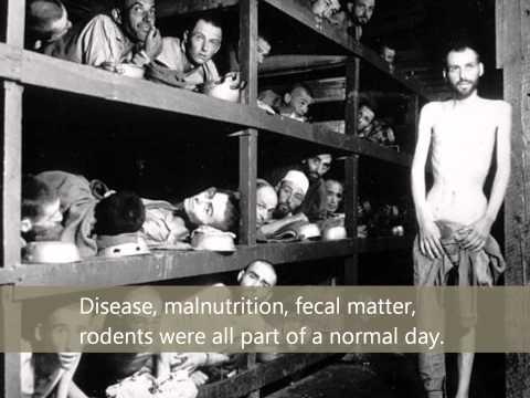 Auschwitz Camp and Barracks