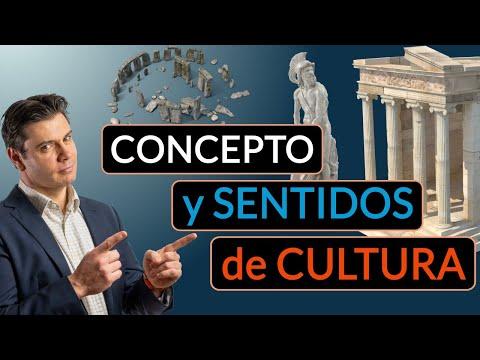 Concepto y sentidos de la Cultura