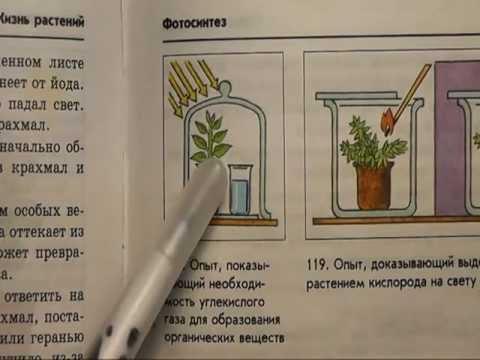 Подготовка к поступлению в медицинский по учебникам