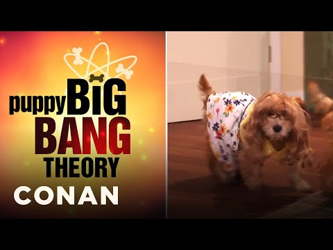 "Thumbnail: Puppy ""Big Bang Theory"" Is Here! - CONAN on TBS"