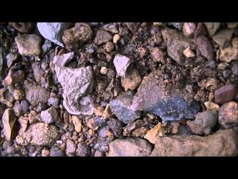 Kentucky Arrowheads-Killer River and Creek Day!