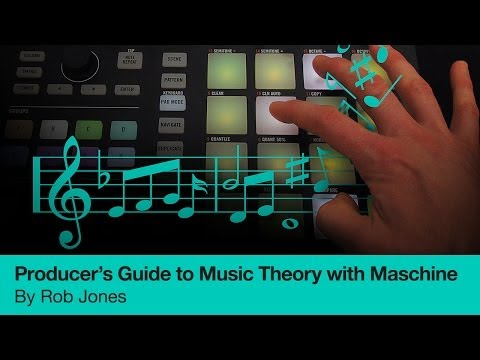 Producer's Guide to Music Theory with Maschine - Online Course Trailer - 동영상