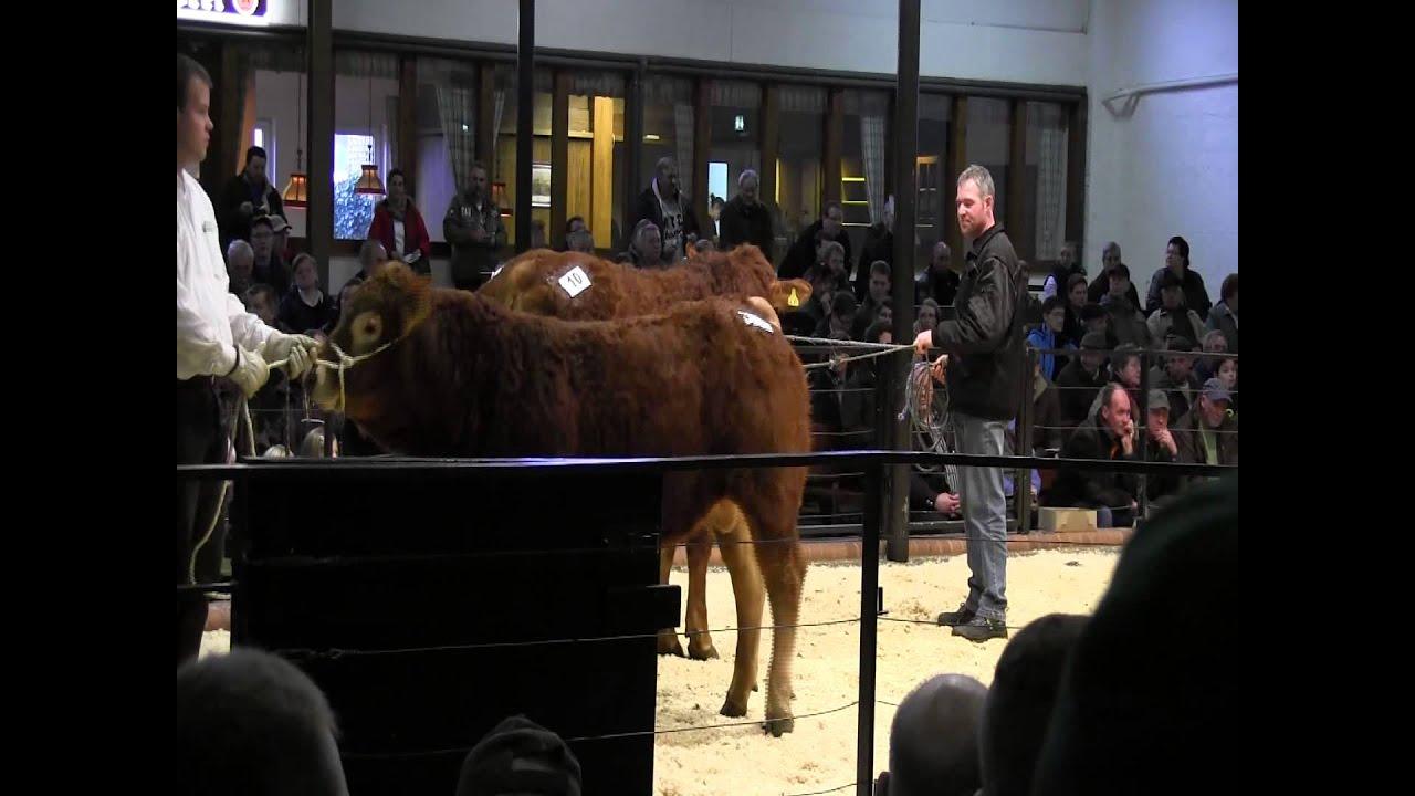2014: 3. Polled Limousin Sale der RSH