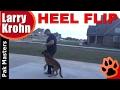 Teaching the Heel Flip with Pak Masters Dog Training