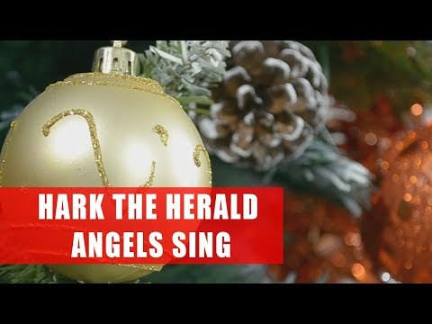 Hark the Herald Angels Sing || Kolęda po angielsku