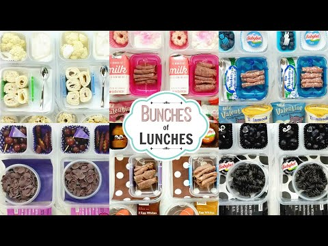 Colorful School Lunch Ideas for KIDS + What They Ate || BUNCHES of LUNCHES