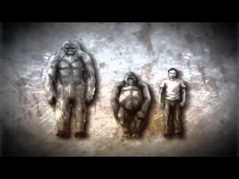 Sasquatch Documentary