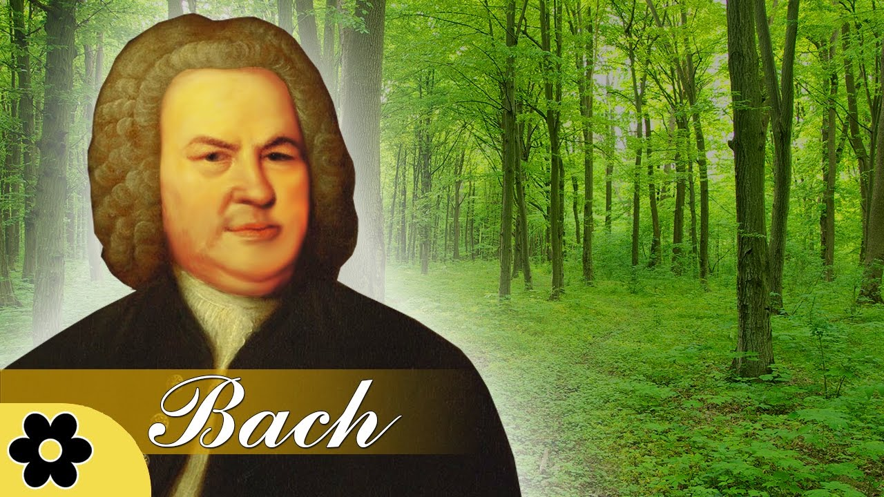 Music for Stress Relief, Classical Music for Relaxation, Instrumental Music, Bach, ♫E006D