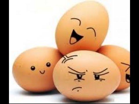 Как определить свежесть куриных яиц?