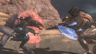 Halo reach skirmisher