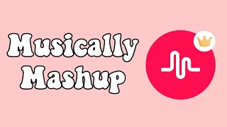 Old Musically songs mashup