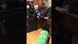 Guy Dancing on Kitchen Counter Wearing Belt With Bells Falls to Floor - 1092034