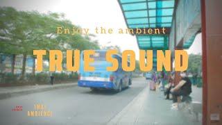 Ambient at Long Bien bus station (City sounds)