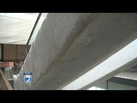 District Court to undergo thorough inspection for mold