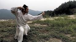 Wudang Long Hua Quan (60fps) - Master Chen Shiyu
