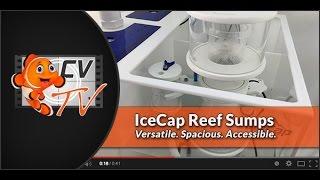 IceCap Reef Sumps: Versatile. Spacious. Accessible.
