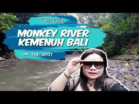 vlog-|-menikmati-segarnya-aliran-sungai-'monkey-river-kemenuh'-bali