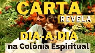 CARTA REVELA  dia-a-dia NA COLONIA ESPIRITUAL