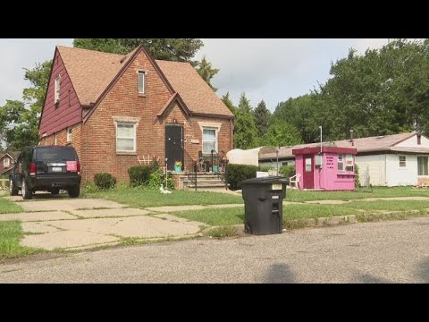 Support Detroit Elder Woman's Food Stand, Sits In Front Of Her Home On Detroit's Westside