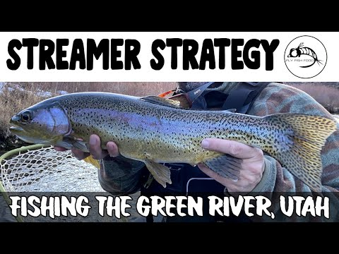 Streamer Strategies On The Green River, Utah