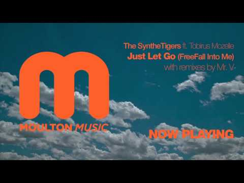 The Synthetiger ft Tobirus Mozelle - Just Let Go Free Fall Into Me (Mr.V Remix)