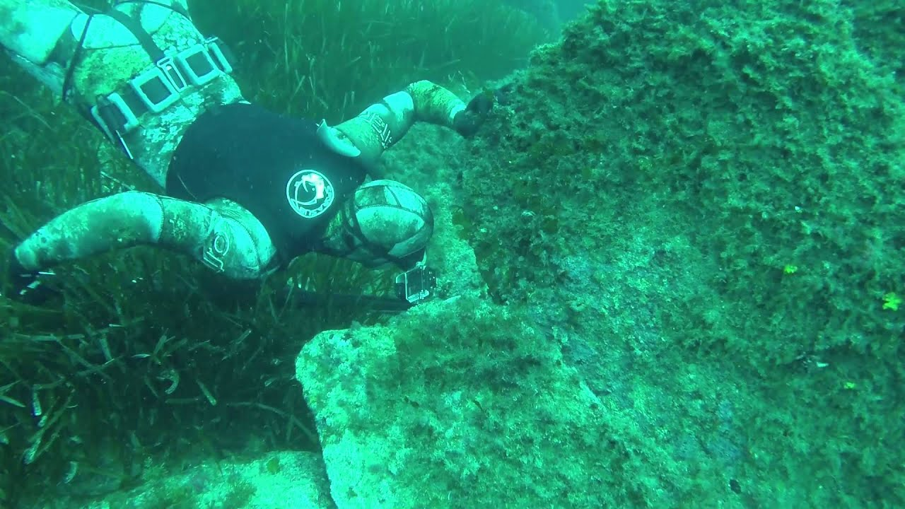video chasse sous marine corse 2014