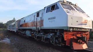 7 Kereta Api Sore Hilir Mudik Sekitar Stasiun Purwokerto